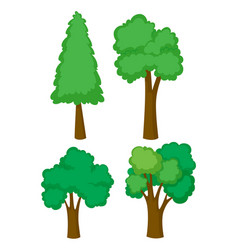 four different types of trees vector image