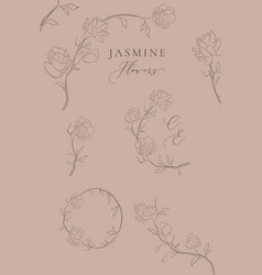 jasmine line drawing floral frames wreaths vector image