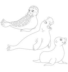 Seals vector image