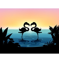 Silhouette flamingo standing in the pond vector