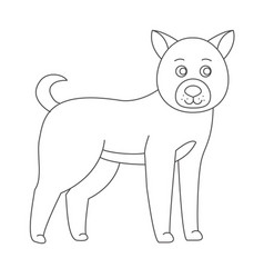 dog for coloring boo vector image vector image