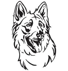 Decorative portrait of dog berger blanc suisse vector