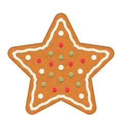 Gingerbread star vector