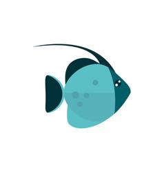 Marine life exotic fish cartoon sea fauna animal vector
