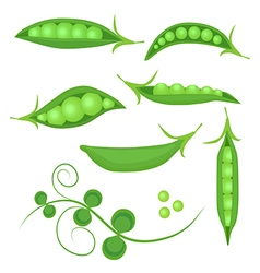 Set fresh green peas isolated vector