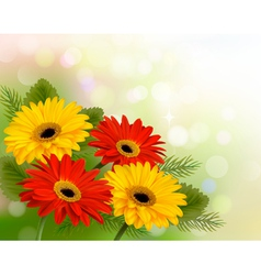 Nature background with colorful beautiful flowers vector image vector image