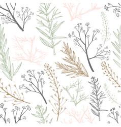 Botanical herbal seamless pattern vector