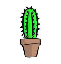 cactus in flowerpot with black vector image