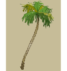 Cartoon bent coconut tree without coconuts vector