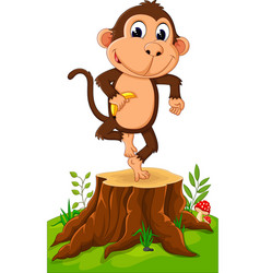 cartoon funny monkey holding banana on tree stump vector image