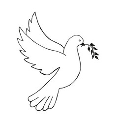 Dove with olive branch hand draw vector