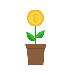 growing money tree big coin with dollar sign vector image