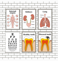 Medical pictures on a wall vector