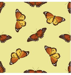 seamless pattern with hand drawn colored cethosia vector image