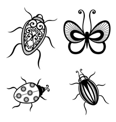 Set of Beautiful Exotic Insects vector