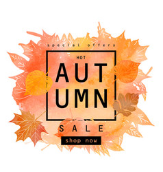 watercolor autumn foliage vector image