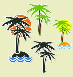 Different palm vector image vector image