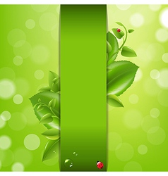 Nature Background With Ladybug And Leafs vector image