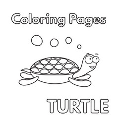 cartoon turtle coloring book vector image