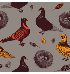 Pigeons and nests Seamless pattern vector image