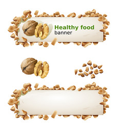 set banners with walnuts and ground nuts vector image
