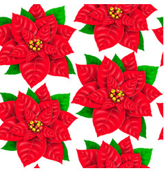 seamless pattern of poinsettia vector image