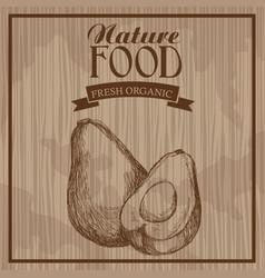 Avocado nature food fresh food hand drawn vector