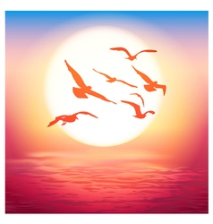 Birds at sunset vector