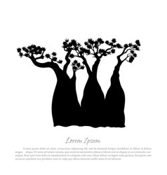 Black silhouette of a baobab on a white background vector