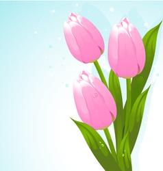 Bunch tulips vector