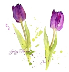 Card with watercolor tulips vector