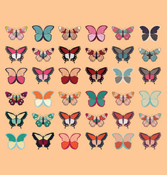 collection thirty six colorful butterflies vector image