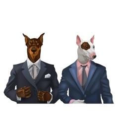 Doberman and bullterrier dressed vector