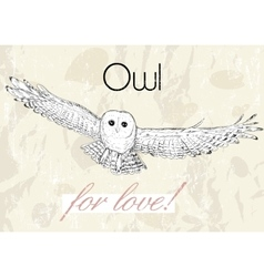 Poster with owl Vintage style vector image