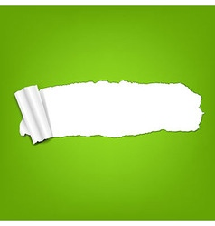 Ripped green paper torn vector