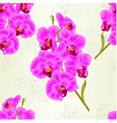 seamless texture branch purple orchids vector image