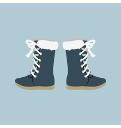 Winter Shoes Felt Boots vector image
