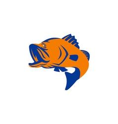 Barramundi Fish Jumping Retro vector image