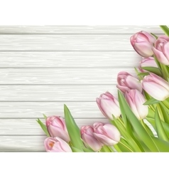 Beautiful pink tulips EPS 10 vector