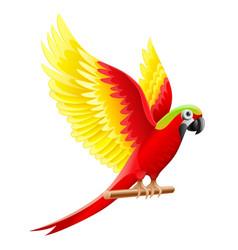 budgerigar parrot ara waving vector image