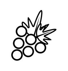 figure delicious grape fruit icon vector image