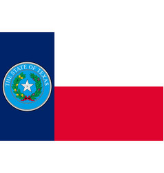 flag texas in united states vector image