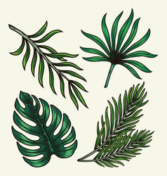 Green tropical leaves composition vector