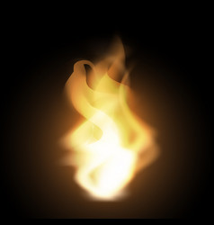 realistic creative hot fire flames or blaze vector image