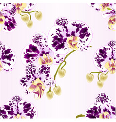 Seamless texture branches orchids spotted vector