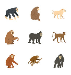 Species of monkey icon set flat style vector