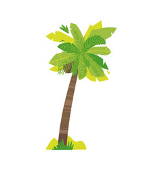 Stylized flat style cartoon coconut palm tree vector