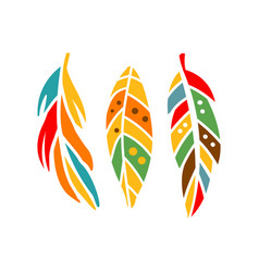 three different colorful feathers native indian vector image vector image
