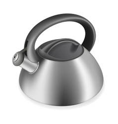 iron kettle with a whistle vector image vector image