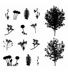 Set of Plant Tree Foliage Elements Silhouette vector image